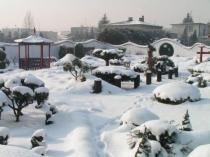 Zima w ogrodzie (Bieruń Nowy)
