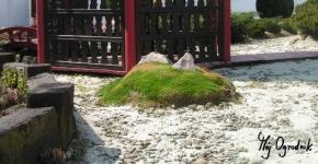 Ścieżka żwirowa w ogrodzie japońskim