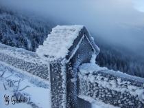 Zimowe warunki na ogródkowanie?