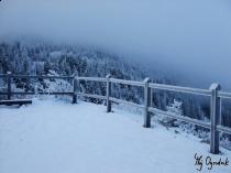 Zima w polskich warunkach 2010