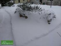 Nawet pod sniegiem może być czasem ciepło