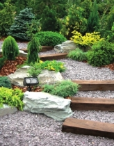 Projektujemy ogród