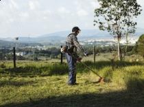Odpowiednia pielęgnacja trawnika