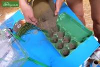 Plastikowa zupa na Pacyfiku z naszych śmieci