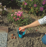 Kiedy potrzebujemy odpowiednich narzędzi ogrodowych