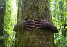 Ekologia i człowiek?